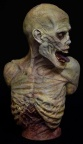 Zombie Bust